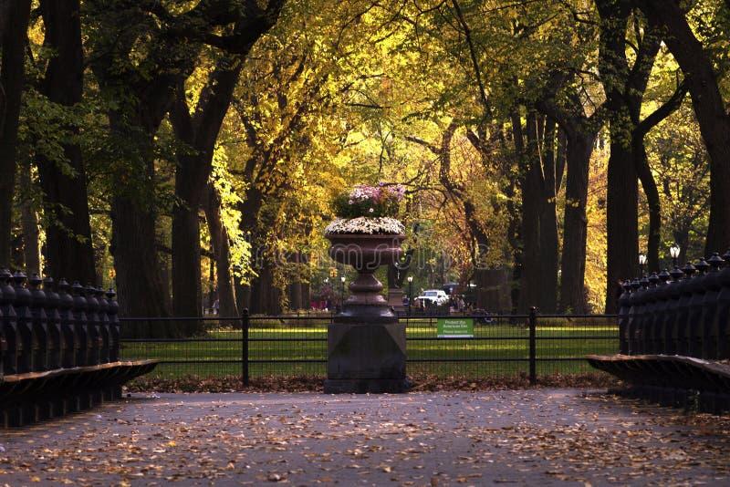 New York City Central Park foto de stock royalty free