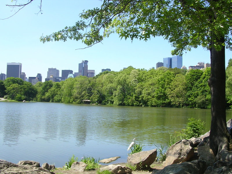 New York City From Central Park Turtle Lake. stock image