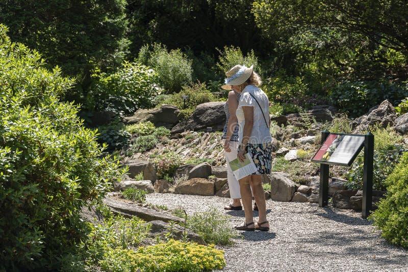 NEW YORK CITY, LOS E.E.U.U. - 26 DE JUNIO DE 2018: Mujeres adultas mayores que caminan en el parque imagen de archivo