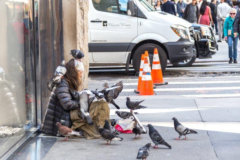 NEW YORK CITY, NUEVA YORK, LOS E.E.U.U. - 15 DE MAYO DE 2019: Mujer sin hogar joven con muchas palomas que buscan caridad de tran imagen de archivo libre de regalías