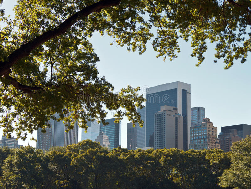 New York City Skyline. Through trees and haze in Central Park stock photography