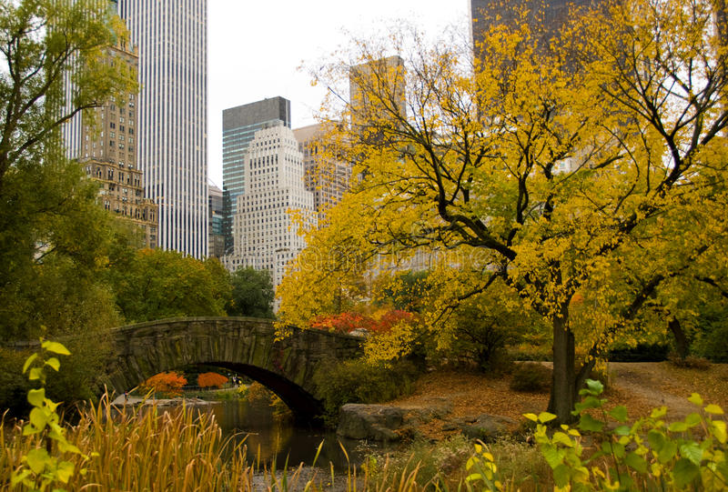 New York City skyline and Central Park in Autumn royalty free stock photos