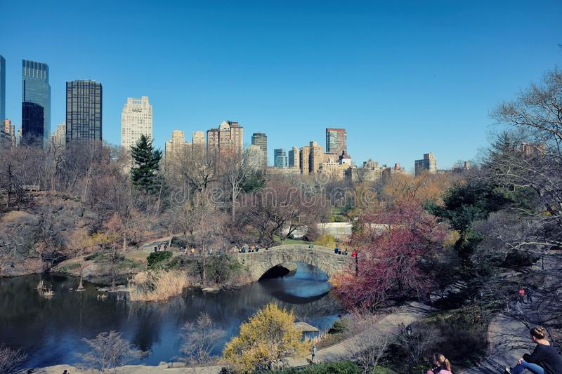 View of Central Park in New York City stock photo