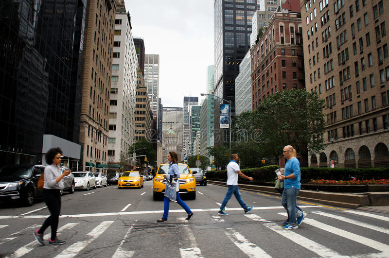 New York City street crossing on Park Ave royalty free stock photo
