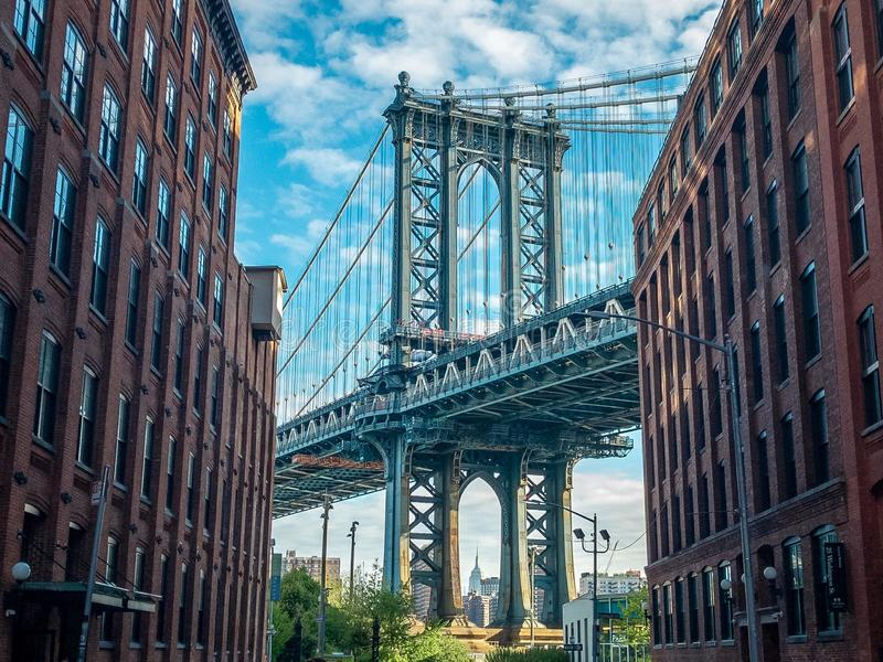 Dumbo street stock photography