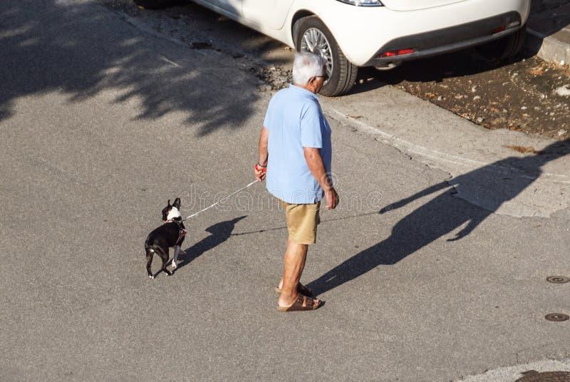 New York, EUA - 3 de janeiro de 2019 Homem que anda com um cão na rua de NYC lifestyle imagem de stock royalty free