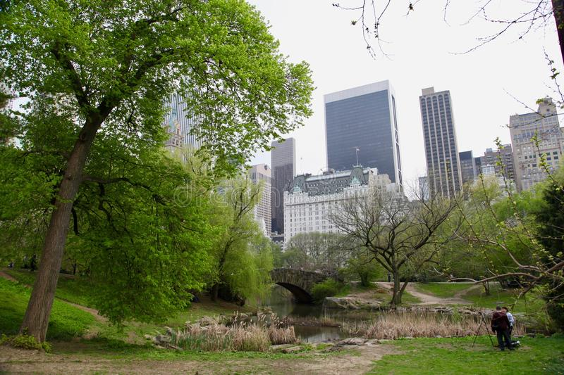 New-York garden, central park royalty free stock photography