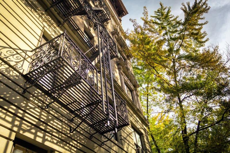 New York klassisk fasade med trappuppgången och färgrikt träd i nedgångsäsong royaltyfri foto