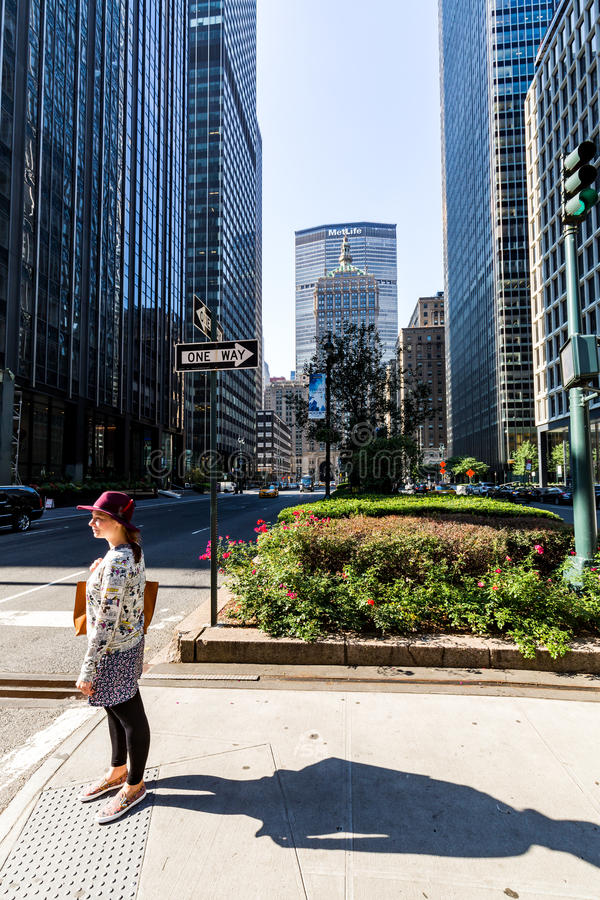 New York, Manhattan fotografia stock libera da diritti