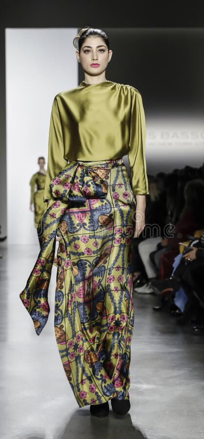 Dennis Basso AW 2020 stock images