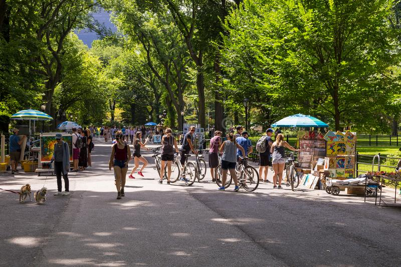 People walking around the main avenue of Central Park. royalty free stock photography