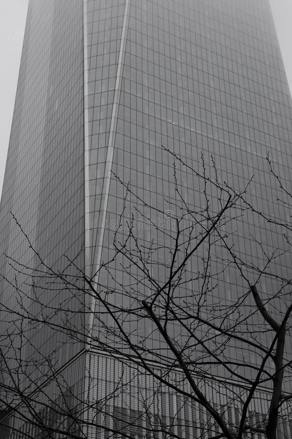 New York piovosa - World Trade Center e monocromio dell'albero fotografie stock