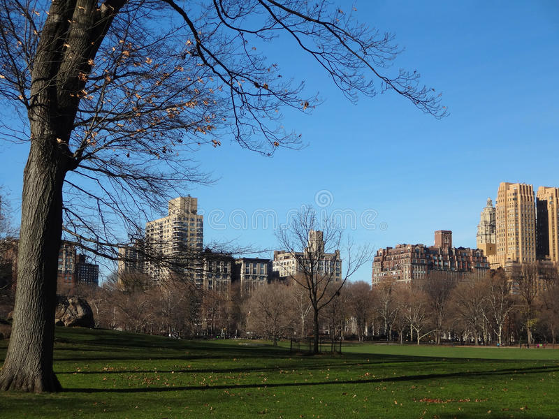 New York Skyline from Inside Central Park. A view of New York City from inside Central Park on a clear winter day stock photo