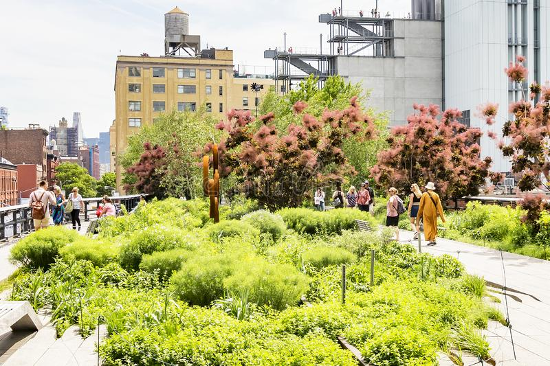 Beautiful trees and plants in High Line Park, New York, USA stock images