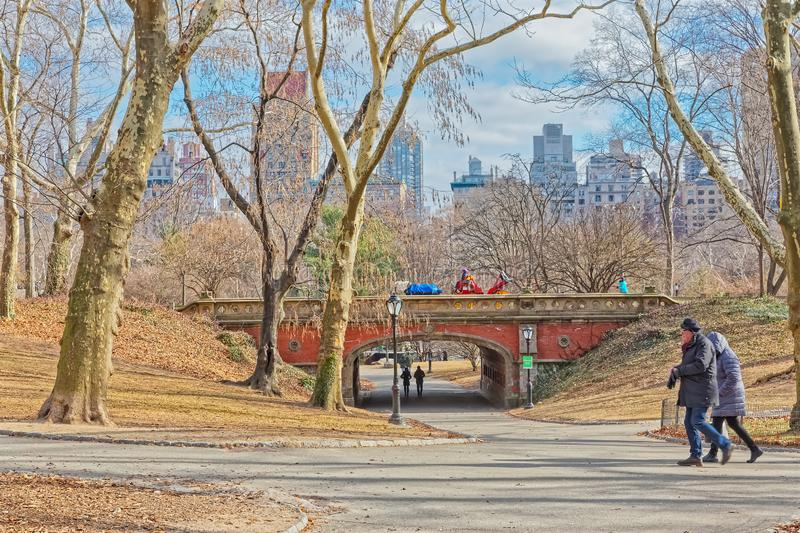 New York Central Park Driprock Arch bridge winter time royalty free stock image