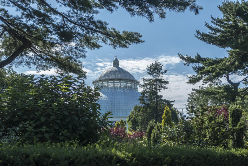 New York, USA - July 6, 2014: Haupt Conservatory New York Botanical Garden stock photo
