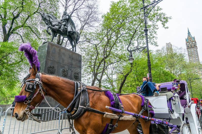 NEW YORK, USA - MAY 5, 2018: A horse and buggy carriage with coachman in Central Park in New York City. stock images