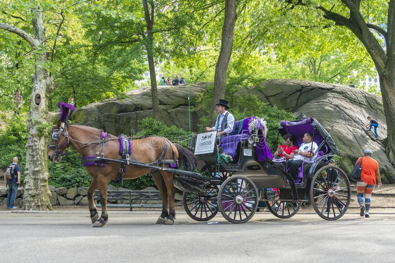 People on horse carriage ride in Central Park of New York City royalty free stock image