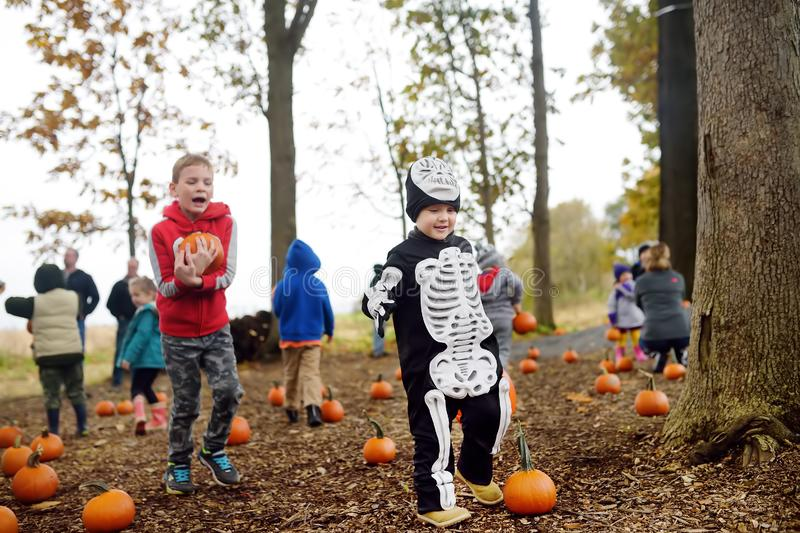New York, USA - October 27, 2018: Traditional halloween party in the forest near New York royalty free stock image