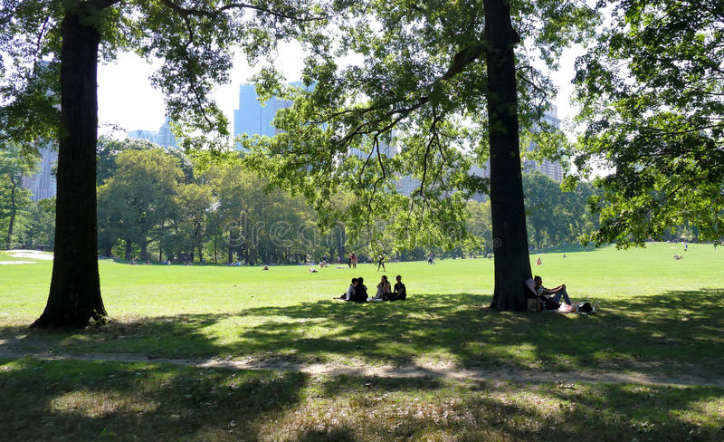 NEW YORK, VERENIGDE STATEN - AUGUSTUS vijfentwintigste, 2016: Mensen die in Central Park op een mooie de Zomerdag ontspannen in N stock afbeeldingen