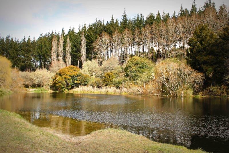 New Zealand湖 免版税图库摄影
