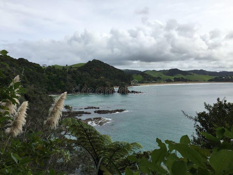 New Zealand royaltyfria foton
