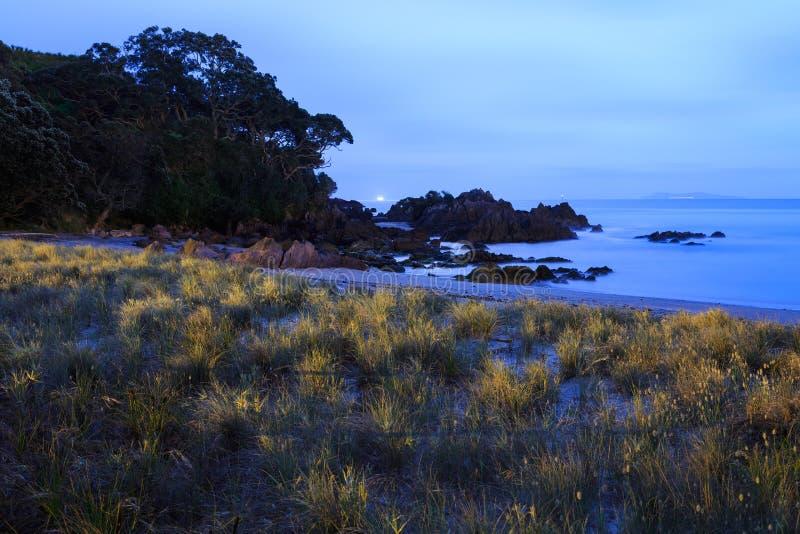 New Zealand beach at night stock photo