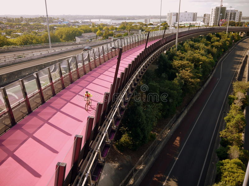 New Zealand: bike path Auckland h royalty free stock photos
