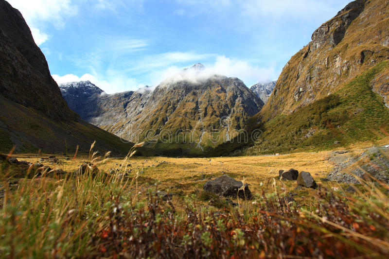 Download New Zealand Fiordland At The Milford Sound Stock Photo - Image: 22795060
