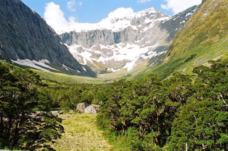 New Zealand glacial valley stock photos