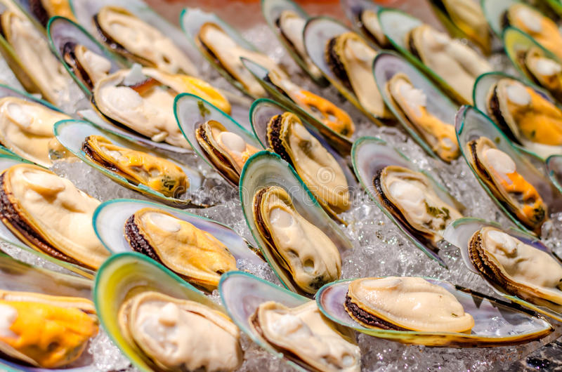 Download New Zealand Green-lipped Mussel Stock Photo - Image: 39982494
