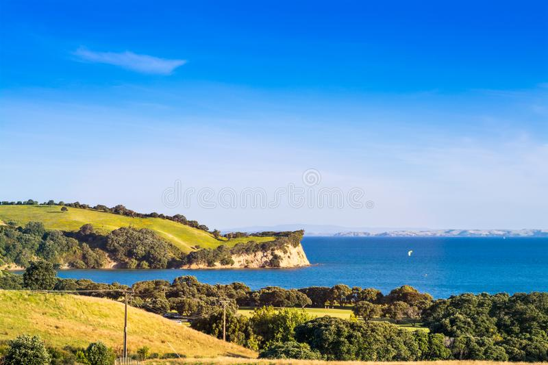 New Zealand iconic landscape - lush green hills and cliff over blue sea. Shakespear regional Park, Auckland royalty free stock images