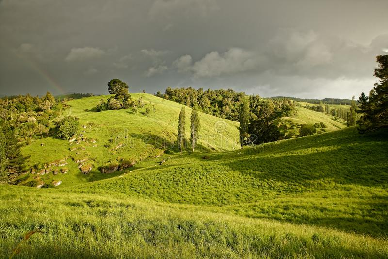 The New Zealand landscape with the rainbow near Marokopa Falls, North Island of New Zealand.  royalty free stock images