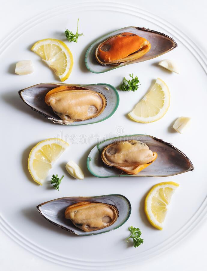 New Zealand Mussels with slices lemon, parsley and garlic, on white dish stock images