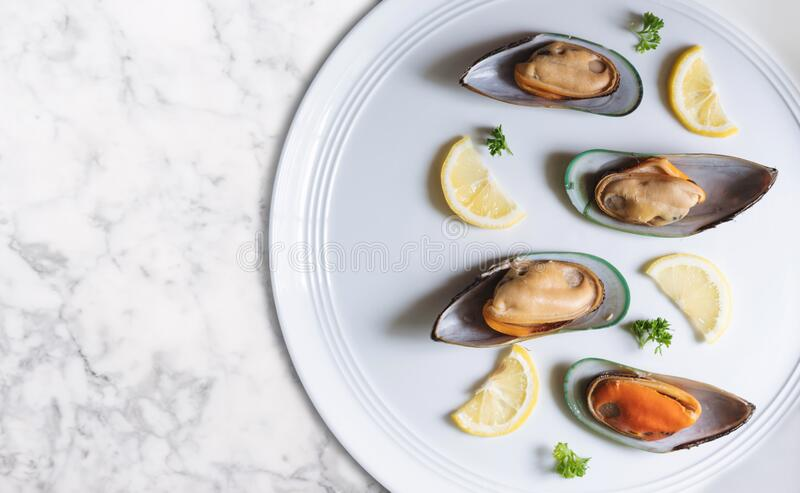 New Zealand Mussels with slices lemon and parsley, on white dish and white marble table stock photography