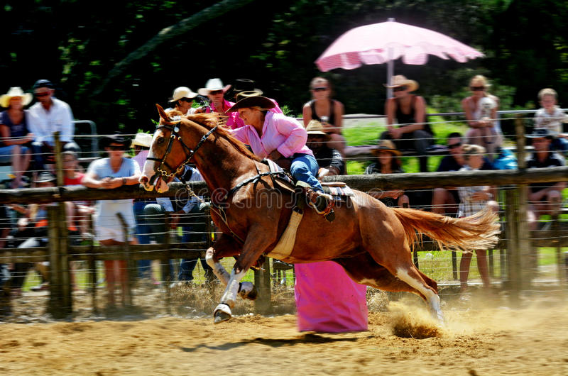 New Zealand Rodeo - Barrel race royalty free stock photo