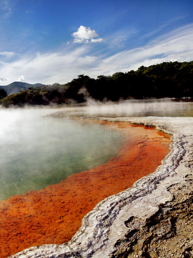 Free New Zealand, Rotorua, Thermal Wonderland Stock Photos - 96325853