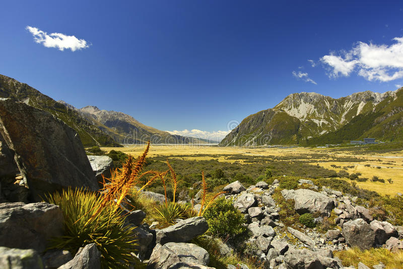 Download New Zealand's Valley View stock photo. Image of grass - 19007650