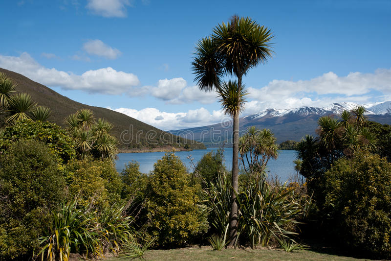 Download New Zealand Scenic Landscape. Royalty Free Stock Image - Image: 21437676