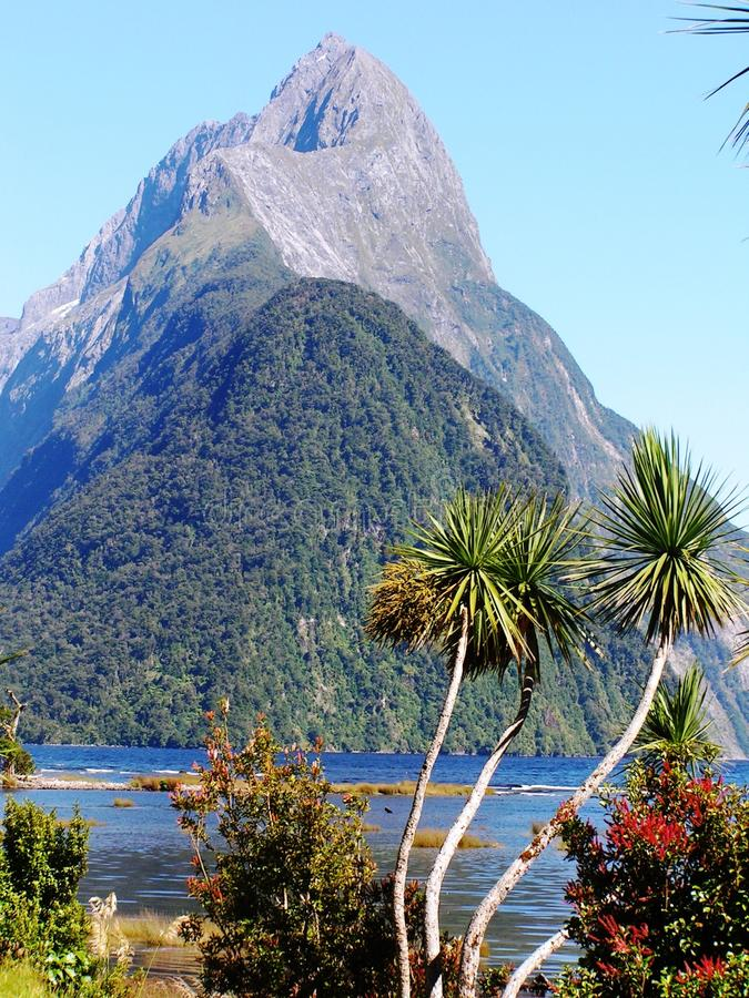 Southern Island Trek In New Zealand