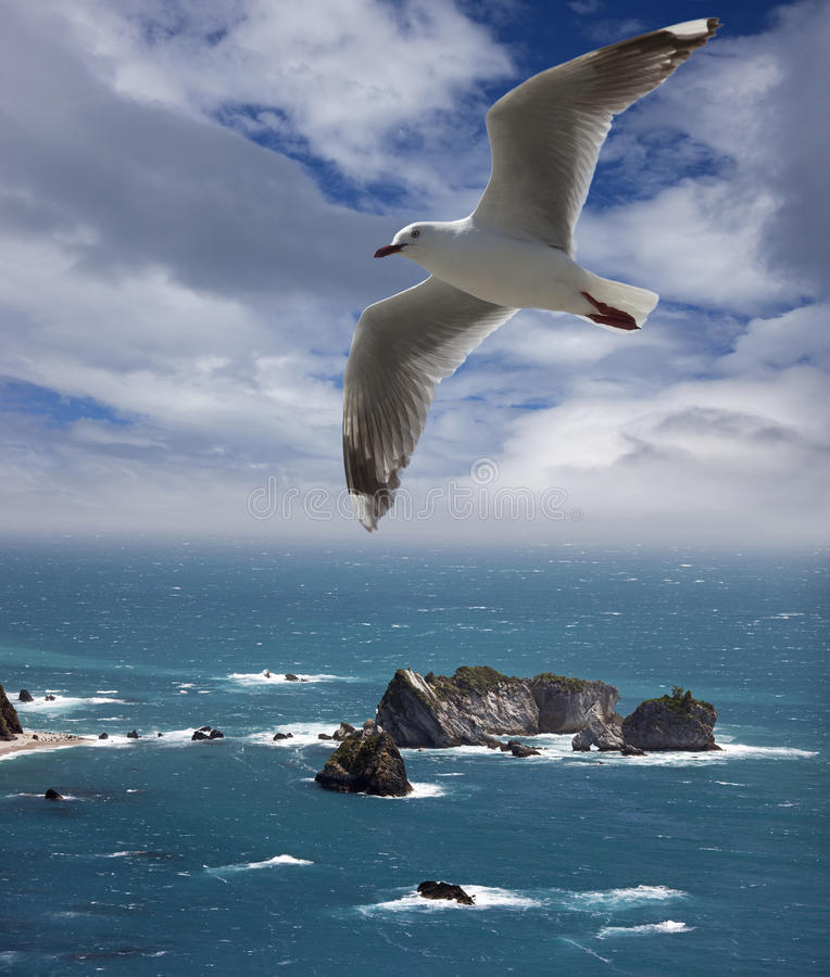 New Zealand - Tasman Sea. And rocks by Three Mile Lagoon royalty free stock images