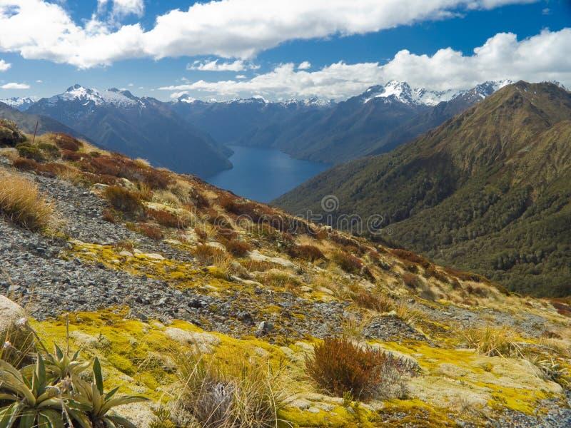 New Zealand Valley Landscape stock photo