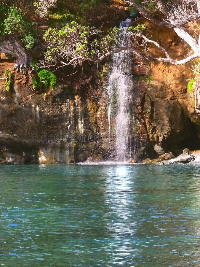 Download New Zealand Waterfall stock photo. Image of outdoors - 19545088