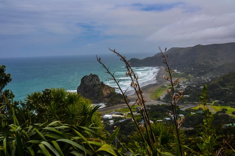 Piha Beach with Lion Rock, New Zealand. New Zeland iconic, famous beaches concept. Panoramic scenic landscape view of surfers popular Piha Beach and Lion Rock in royalty free stock image