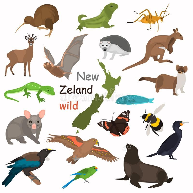 New Zeland wild animals color flat icons set for web and mobile design royalty free stock photography