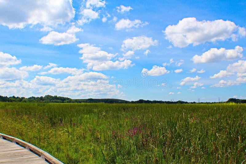 Newark Delaware Clouds Blue Sky royaltyfria foton