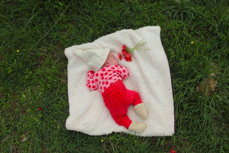 Download Newborn девушка стоковое фото. изображение насчитывающей цветок - 18385802