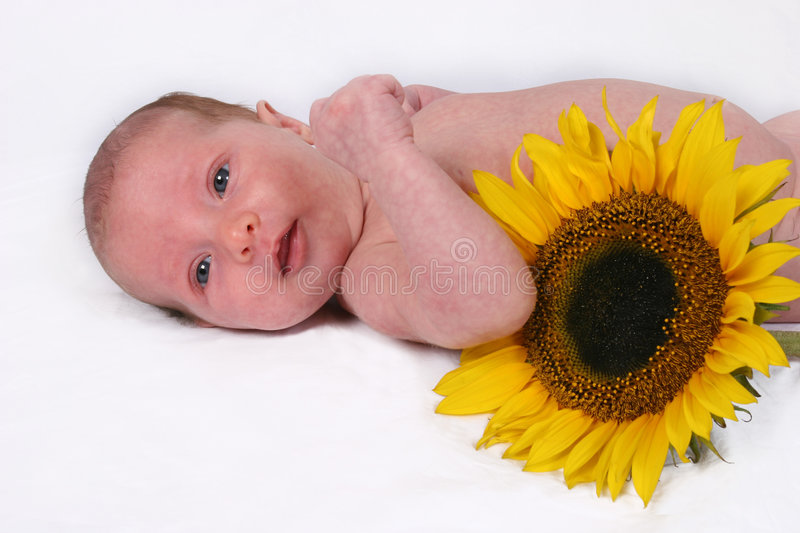Newborn Baby. On her first photo shoot royalty free stock photo