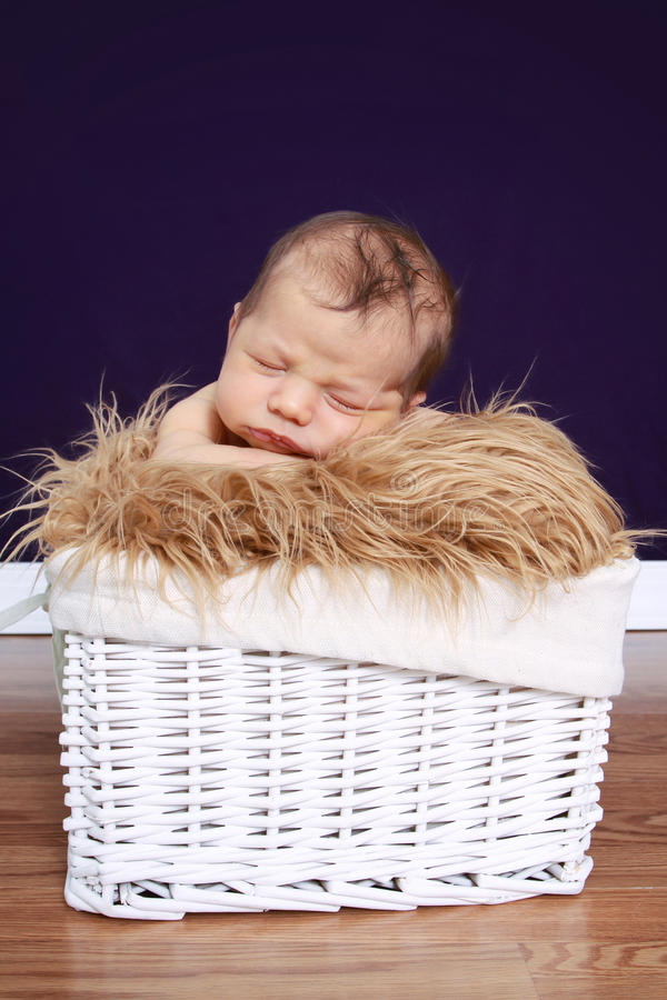 Newborn Baby in Basket royalty free stock image