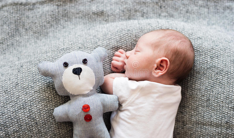 Newborn baby boy lying on bed with teddy bear, sleeping royalty free stock image